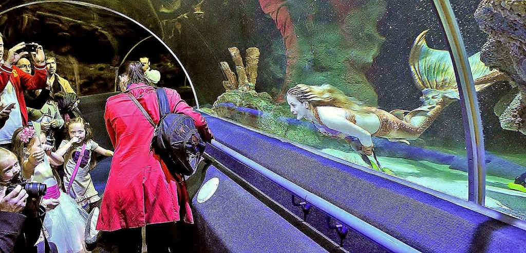 Deep Sea World Mermaid in tunnel with children