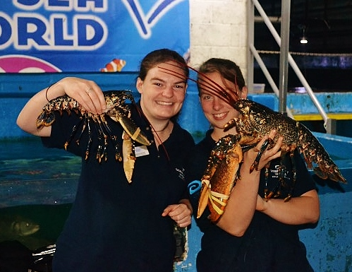 Charli the giant blue lobster and his pal arrive at Deep Sea World
