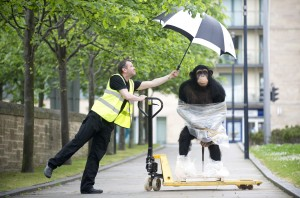 Rainforest Animals arriving at Dynamic Earth