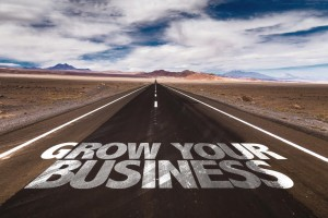 grow-business-edinburgh