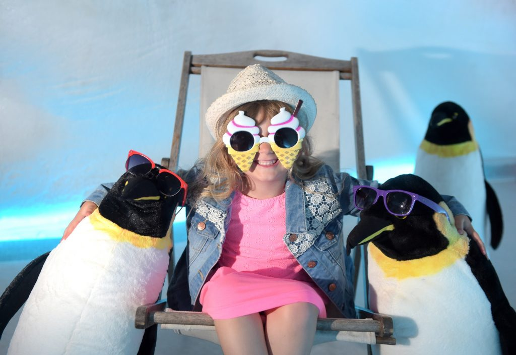 Ava Wright hanging out with penguines in front of a real iceberg at Dynamic Earth this summer