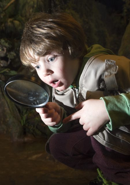 Picture by Lesley Martin 06 February 2017  Finn Chomczuk age 4 explores the rainforest at Dynamic Earth, Edinburgh.  © Lesley Martin 2017 - All Rights Reserved t: 07836745264 e: lesley@lesleymartin.co.uk