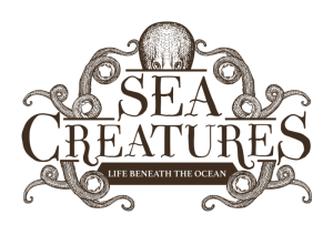SEA CREATURES: Life Beneath The Ocean