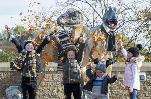 Picture by Lesley Martin 6 October 2018 Autumn/winter season pictures, Dynamic Earth. Kids: Ollie Thornton age 8, Jessica McKenna age 6, Charlie McIntosh age 7 and Louis McIntosh age 3. © Lesley Martin 2018 e: lesley@lesleymartin.co.uk t: 07836745264