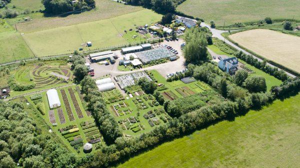 Secret Herb Garden 1